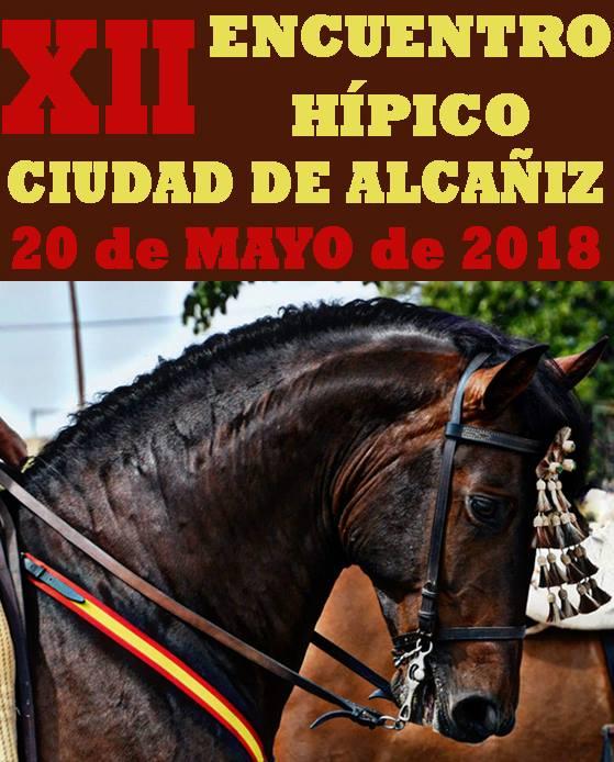 XII Encuentro Hípico Ciudad de Alcañiz