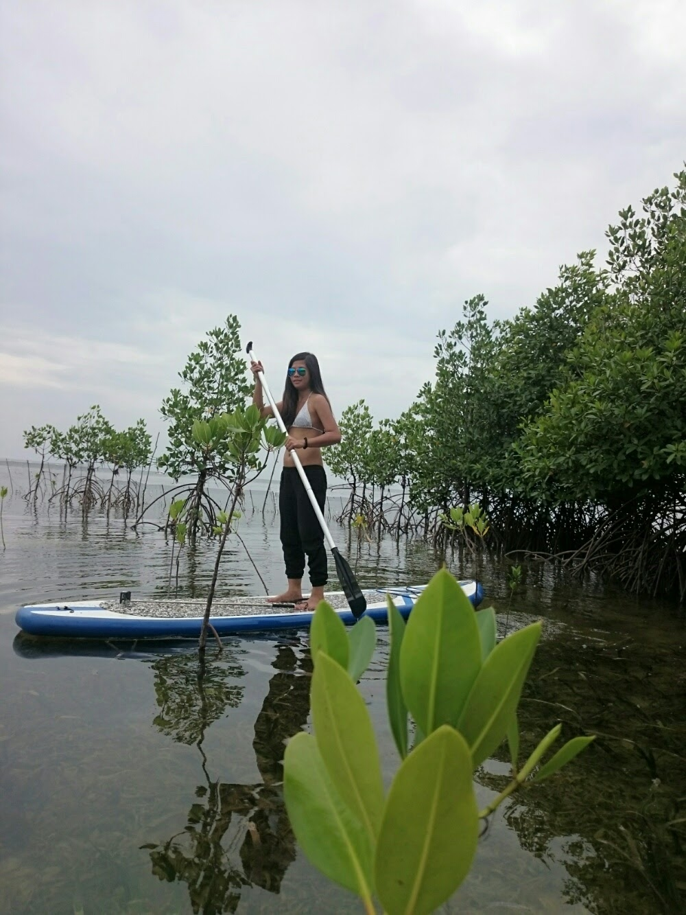 blue palawan mangrove reservoir paddle boarding