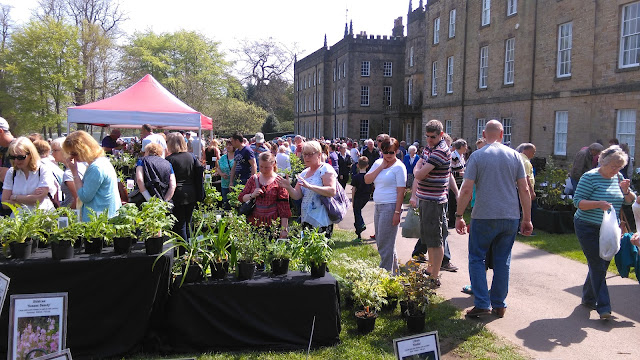 Rare and Unusual Plant Fair