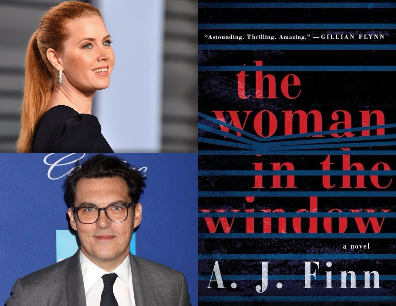 woman in the window movie
