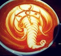 Kahve Falında Fil