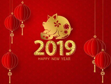 year 2019, year of pig