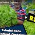 Curso sobre Horta orgânica Vertical, Horta para consumo próprio
