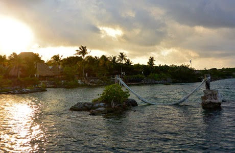 Xel-há, Riviera Maya, Delphinus