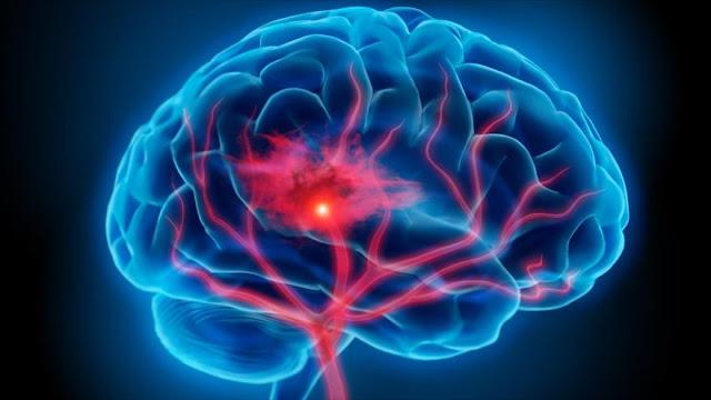 ¡Una parte del cerebro no madura hasta los 36 años!