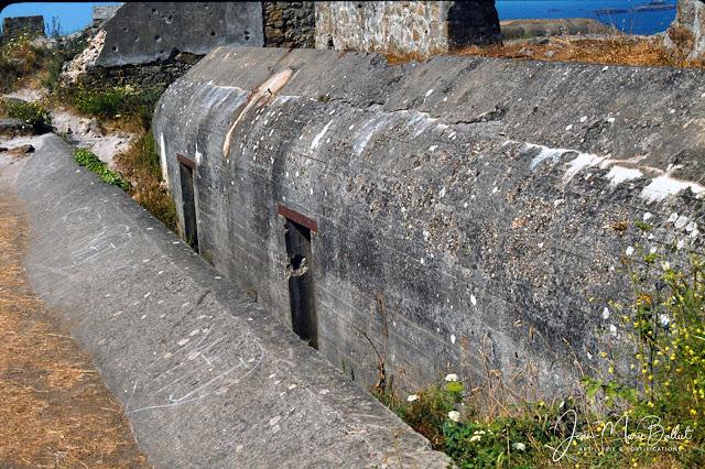 Fort d'Arboulé (la Varde). Casemate double de type R622