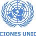 ONU pide respeto al derecho de los votantes a la Constituyente