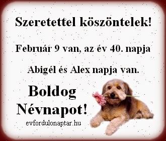 Február 9, Abigél, Alex névnap