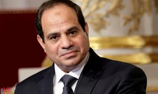 ماذا حدث للعلاقات الخارجية المصرية في عام 2017؟