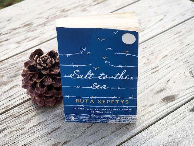 salt-to-the-sea-neuzugaenge-buecher