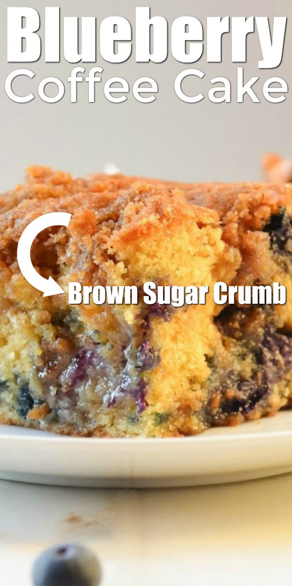 Classic Blueberry Cinnamon Coffee Cake on a plate with a cinnamon brown sugar swirl and brown sugar crumb from Serena Bakes Simply From Scratch.