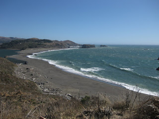 View of the beach from Highway 1 near Jenner, California