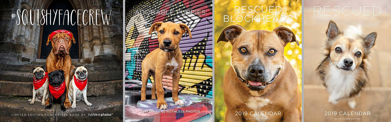 SquishyFaceCrew book Adorable Puppies diary Rescued Blockhead Calendar 2019