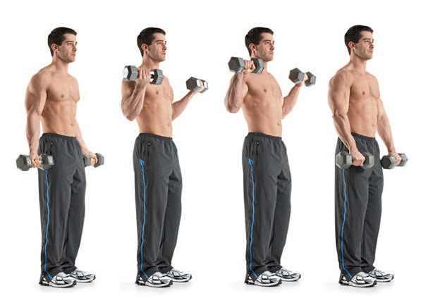 biceps antrenmanı