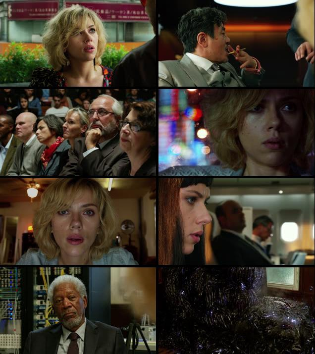 Lucy 2014 Dual Audio Hindi 480p BluRay