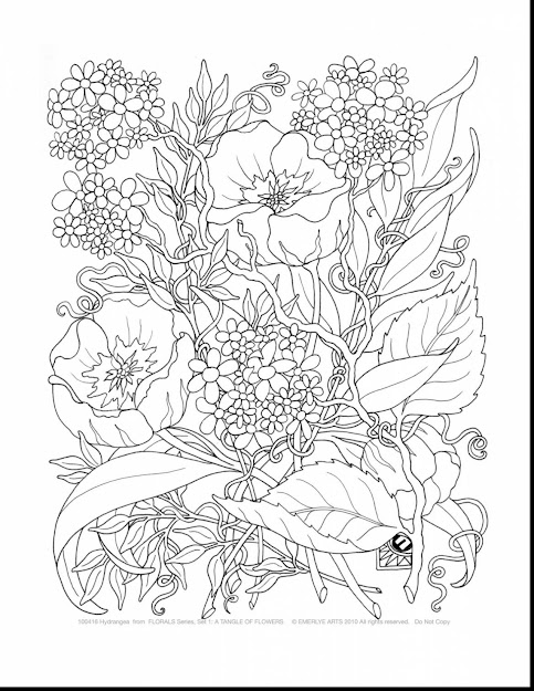 Beautiful Printable Adult Coloring Pages Flowers With Adults Coloring Pages  And Adults Coloring Pages Pdf