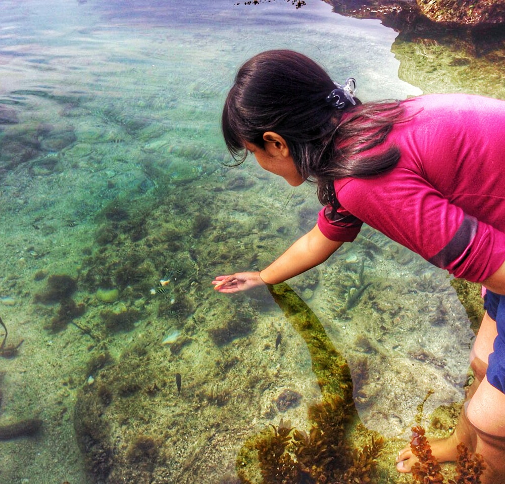 Travellers Pesona Berbeda Dari Pantai Kedung Celeng Malang Jawa