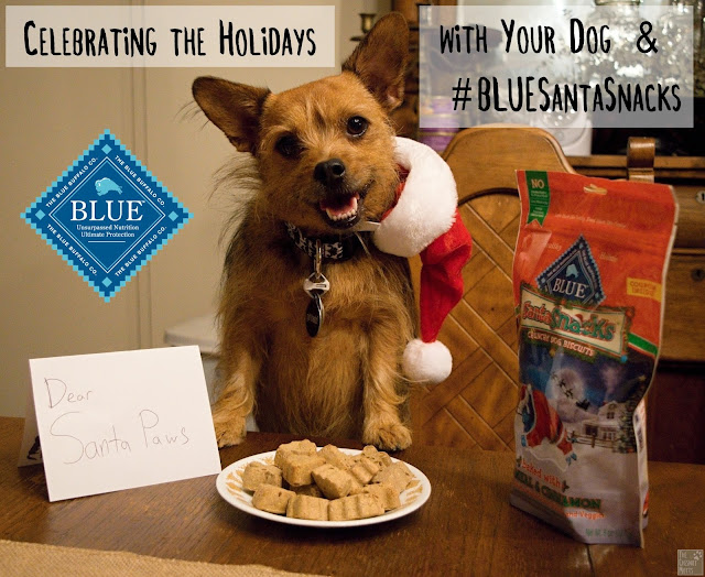 Jada with Blue Buffalo Santa Snacks