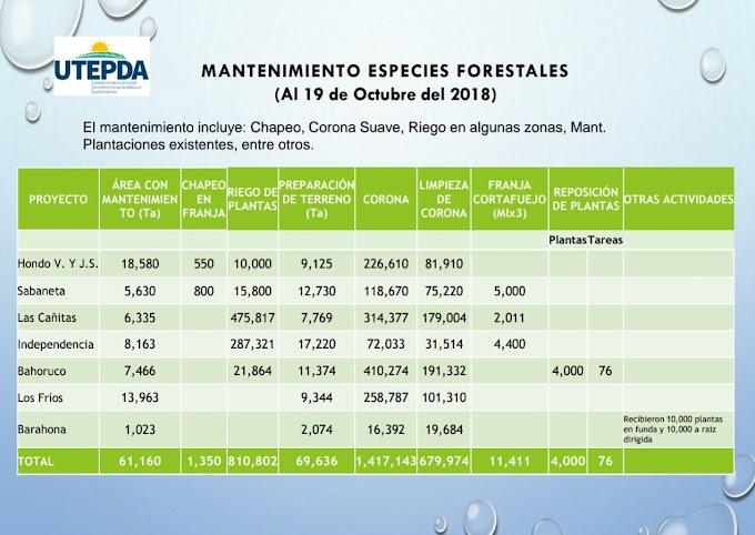 Presidente Danilo Medina supervisa el avance de los 7 proyectos agroforestales