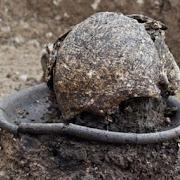 Находка грузинских арехеологов: череп на блюде