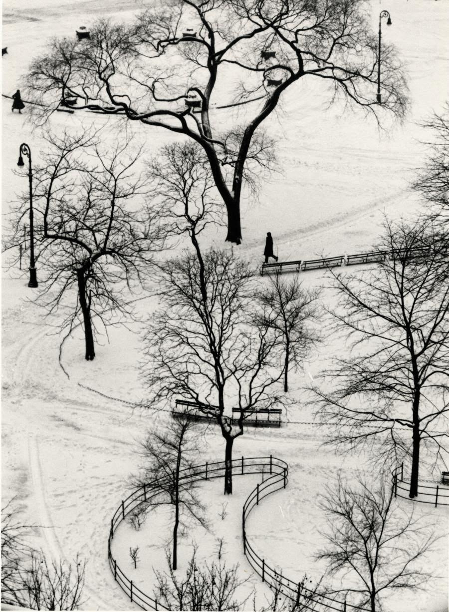 Fotografia de Andre Kertesz