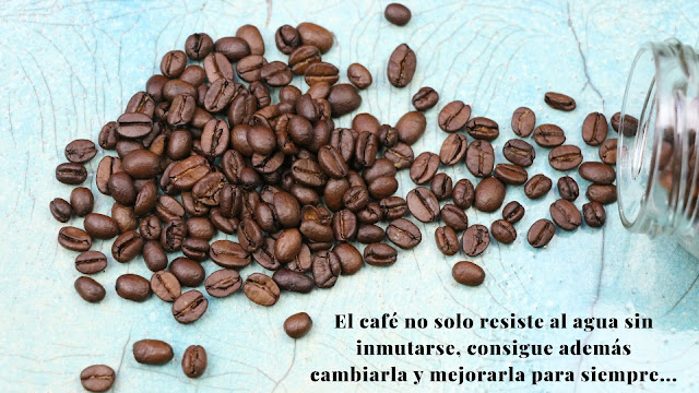 Resultado de imagen de cuenta zanahoria cafe
