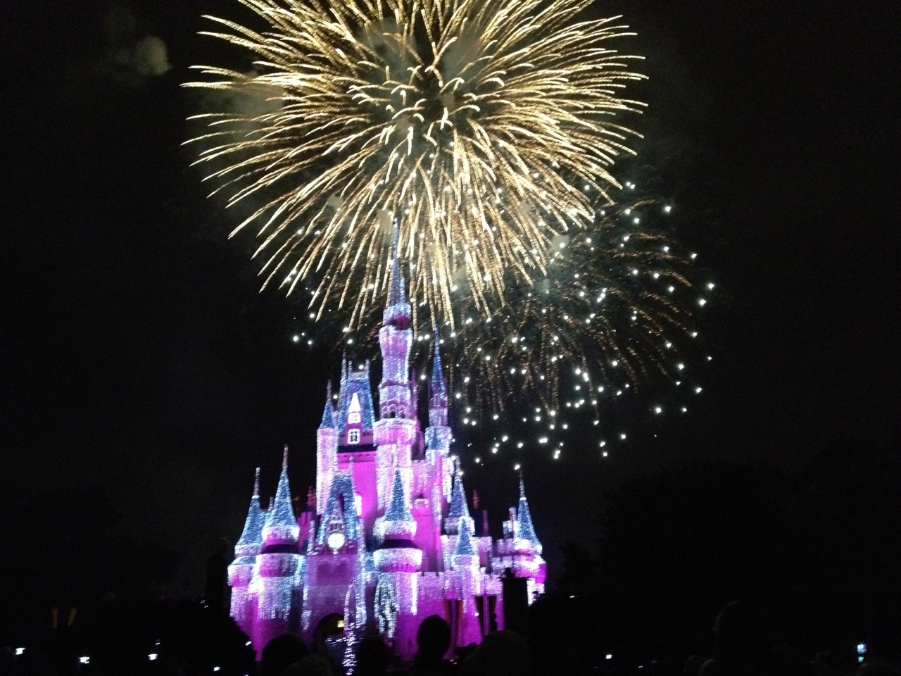 52 Weeks Of Disney Week 49 Magic Kingdom Holiday Lights And Fireworks Dec 8
