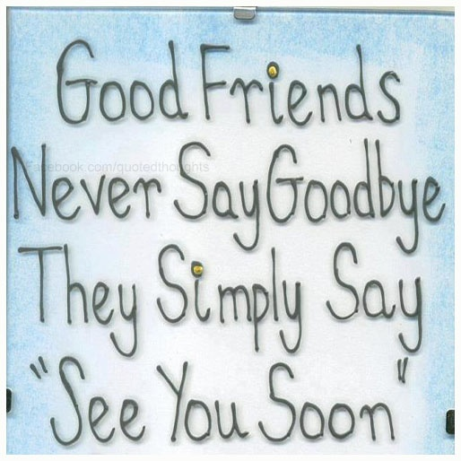 friends forever quotes and -#main