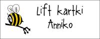http://diabelskimlyn.blogspot.com/2016/02/lift-kartki-anniko.html