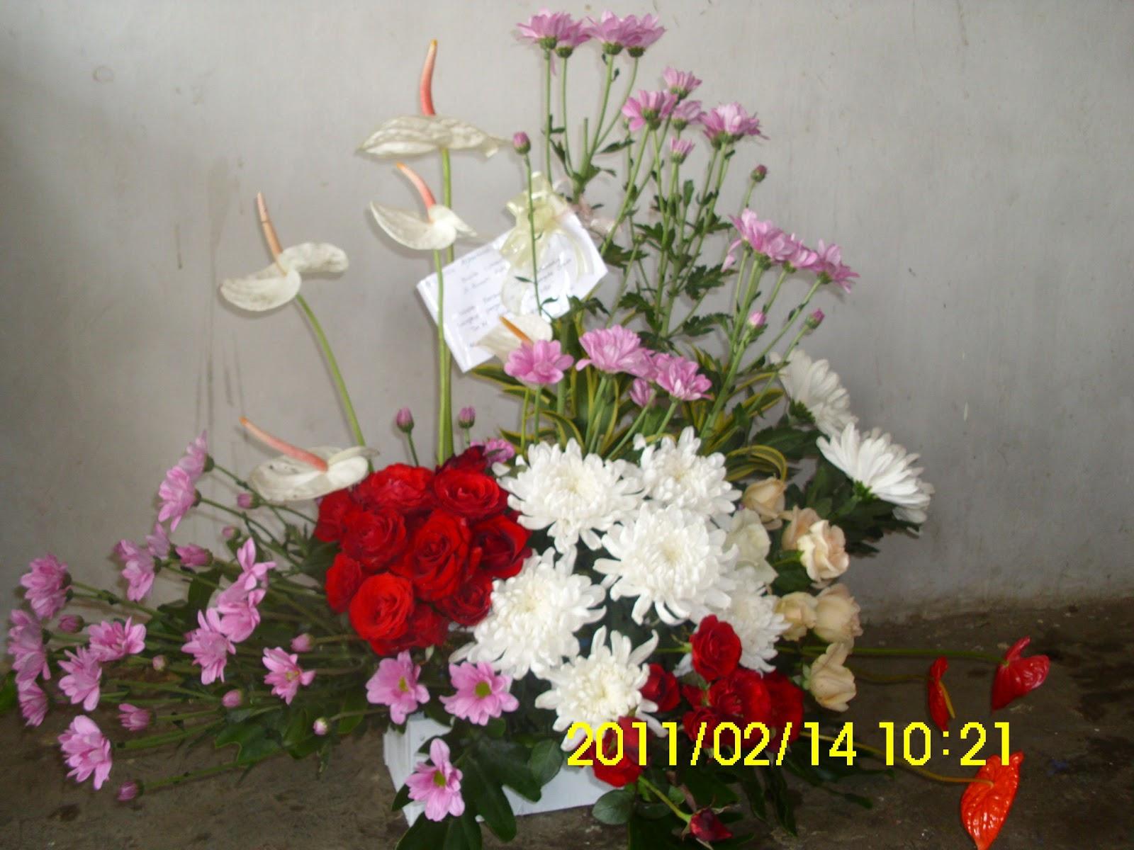 FRESH FLOWER CIRCUIT Florist Bali Denpasar Florist