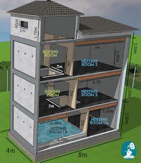 Thiết kế nhà nuôi chim yến.
