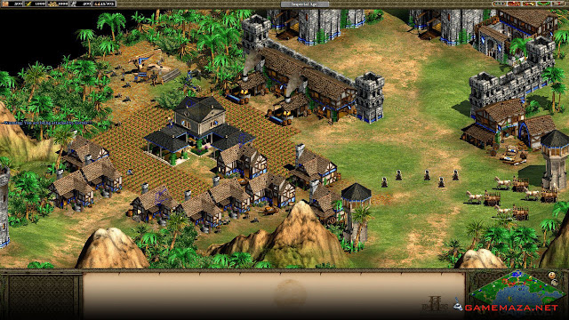 Age of Empires II The Forgotten Gameplay Screenshot 1