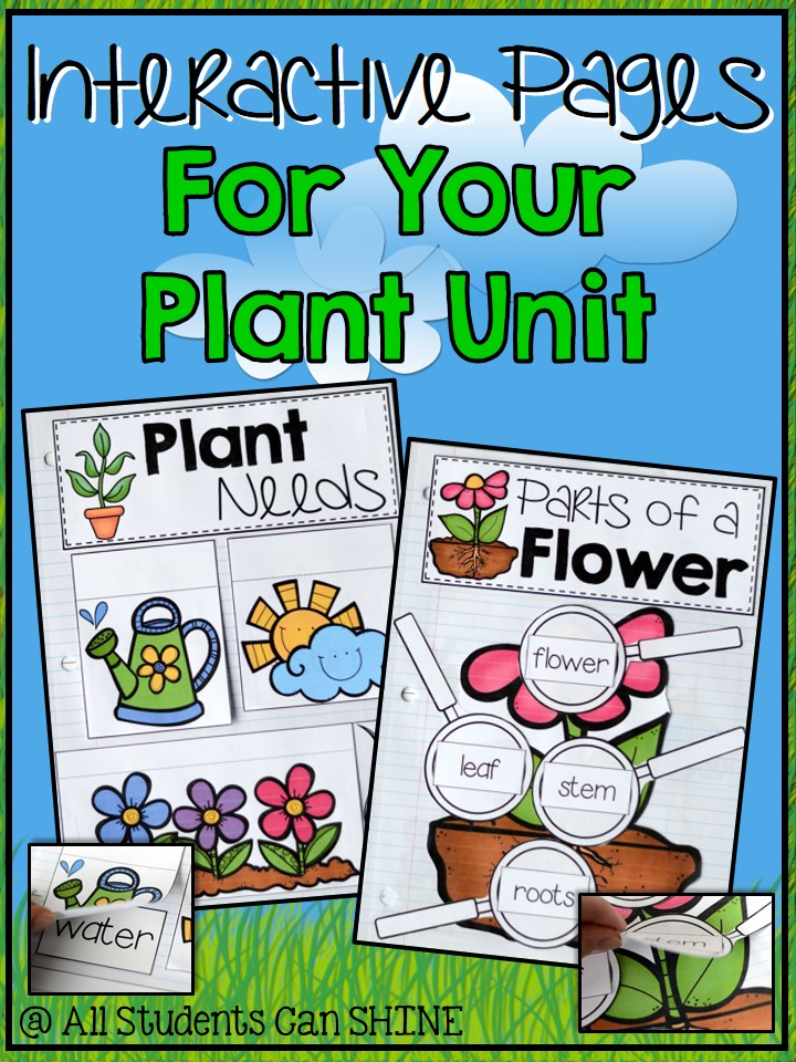 plants interactive notebook freebie