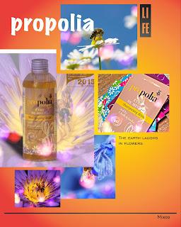 shampoing propolis abeilles soins cheveux