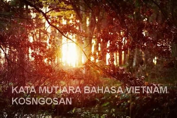 kata bijak bahasa vietnam