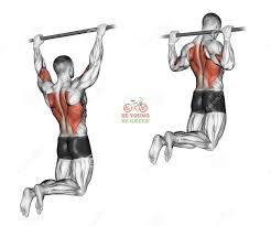 How To Build A Wide Muscular Back ?