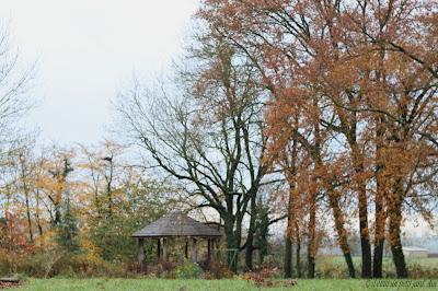 kiosque et jardin à l'automne 2016