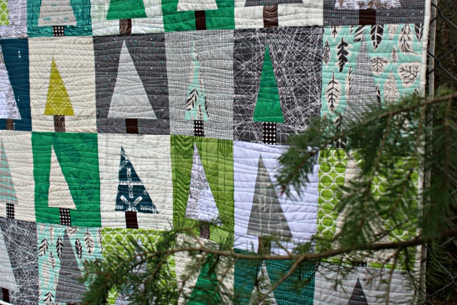 sunlight quilter quilt at htm mably with class exhibits fassett brandon module island and in kaffe design workshop forest the