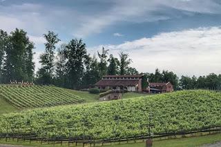 Potomac Point Winery landscape