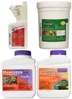 """best buying fungicides on amazon"",""best choose fungicides"",""best buying fungicides for plant disease"""