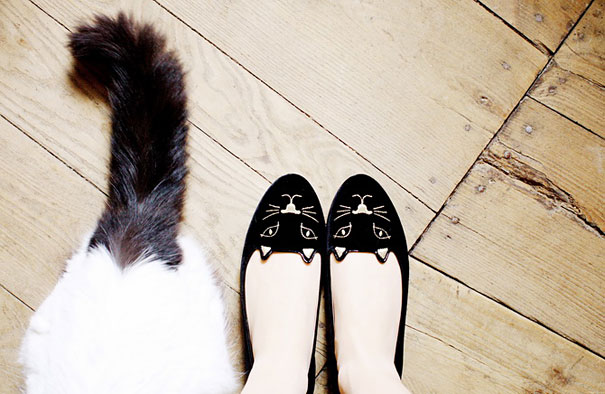 Cat Face Shoes