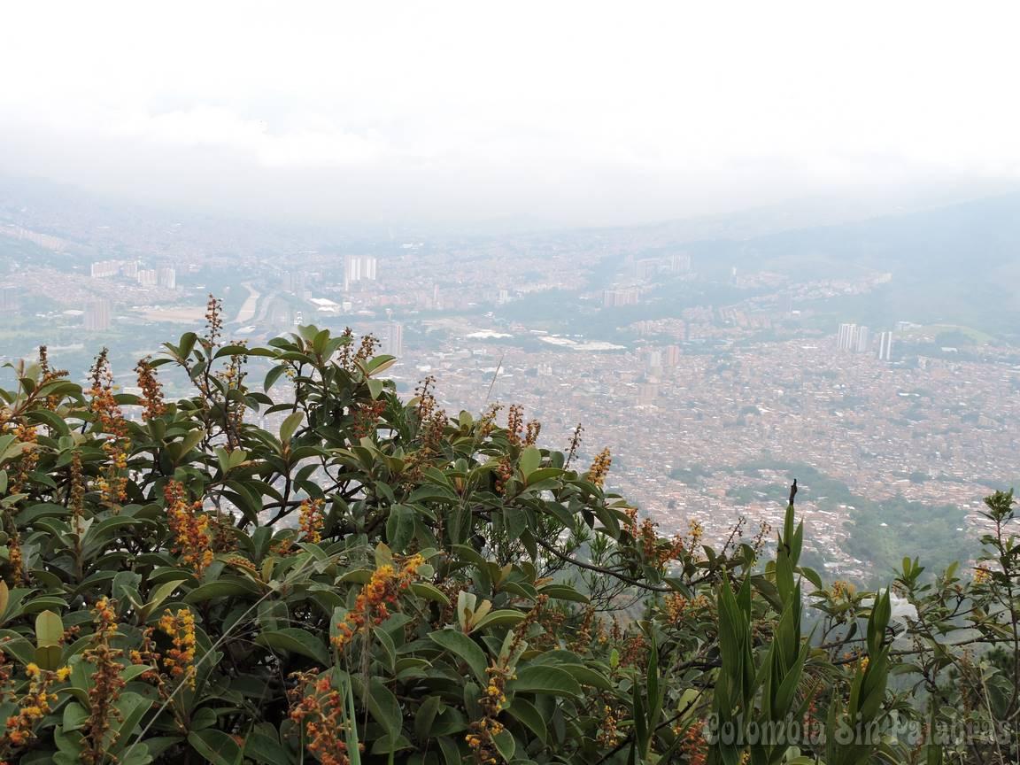 vista de la ciudad de bello y medellín desde el quitasol