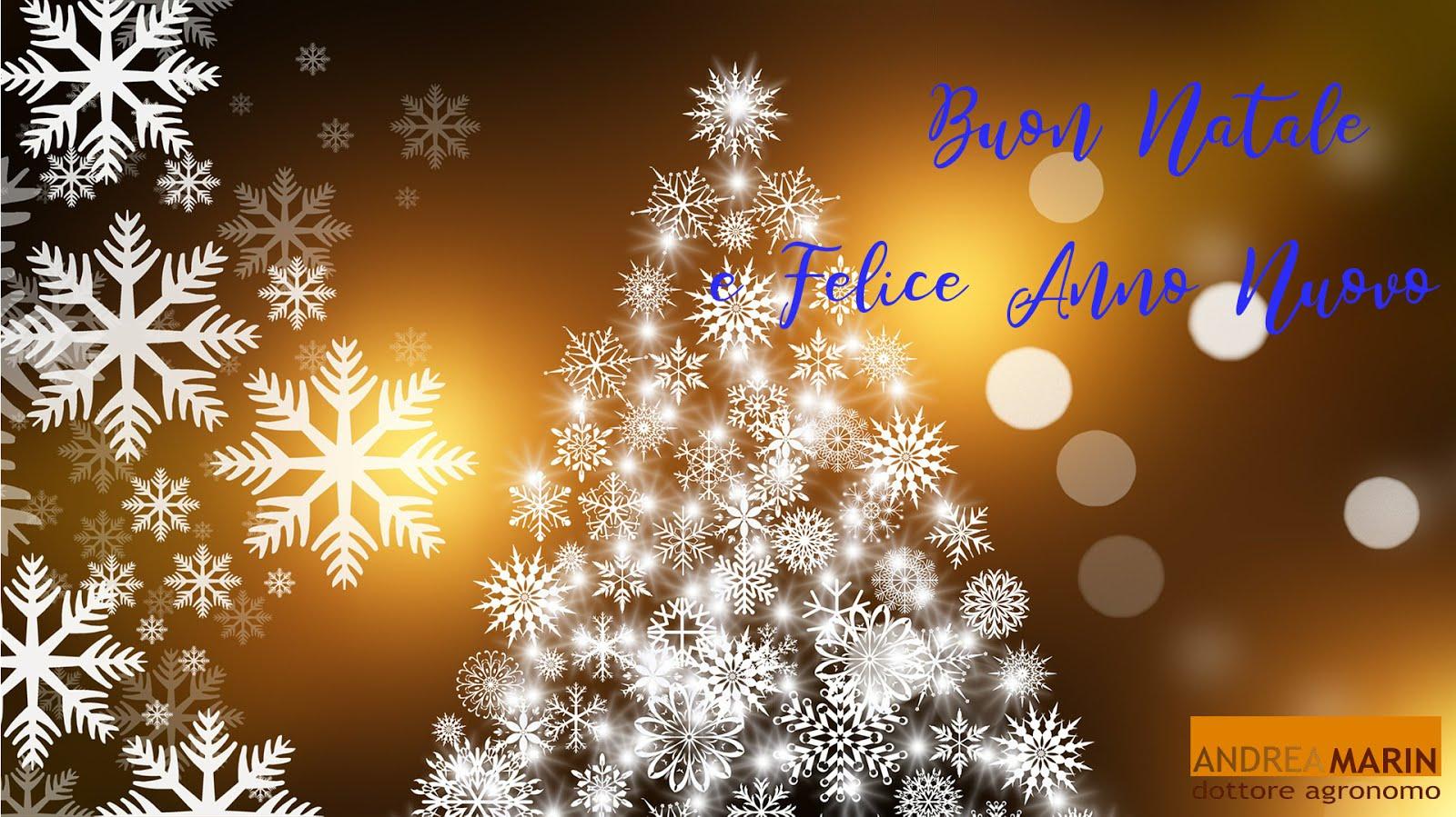 Auguri Di Natale Per Un Dottore.Andrea Marin Dottore Agronomo 2018