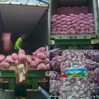 jual bawang putih,harga bawang putih,bawang putih cina,bawang putih lokal