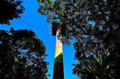 Lighthouse at the top of Pumpkin Hill Utila