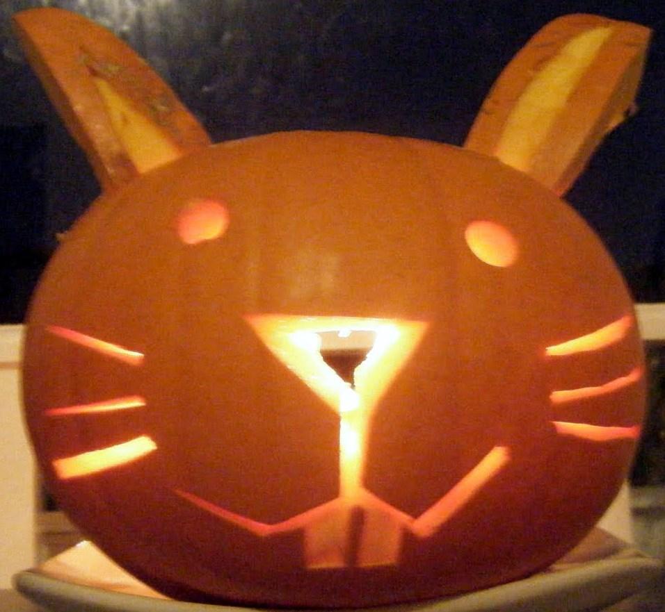 Rabbit Ramblings Bun O Lanterns Bunny Pumpkins For Halloween