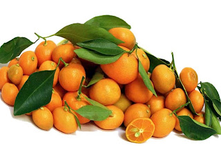 Calamondin fruit images wallpaper