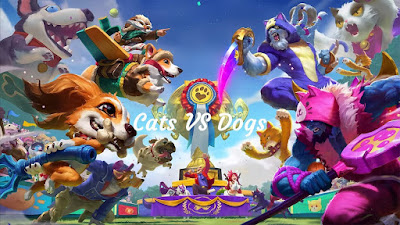 official login screen for Cats VS Dogs