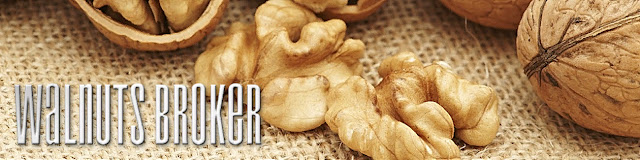 Цена на грецкий орех в Украине в 2019 году Walnuts Broker