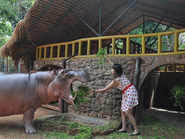 Wisata edukasi Maharani Zoo